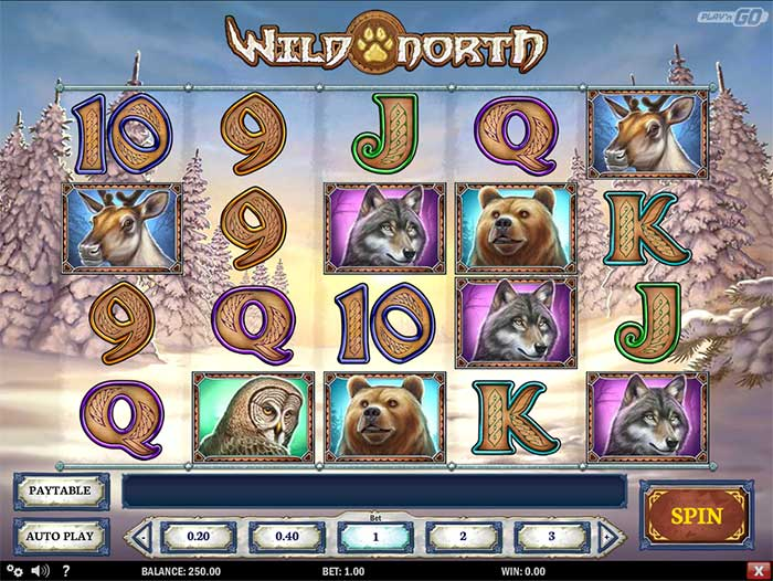 wild-north-slot1